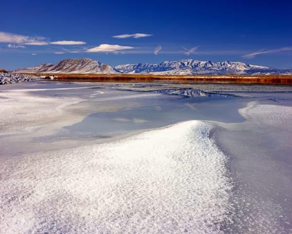 Dacey Ice Photography Art   Craig Primas Photography