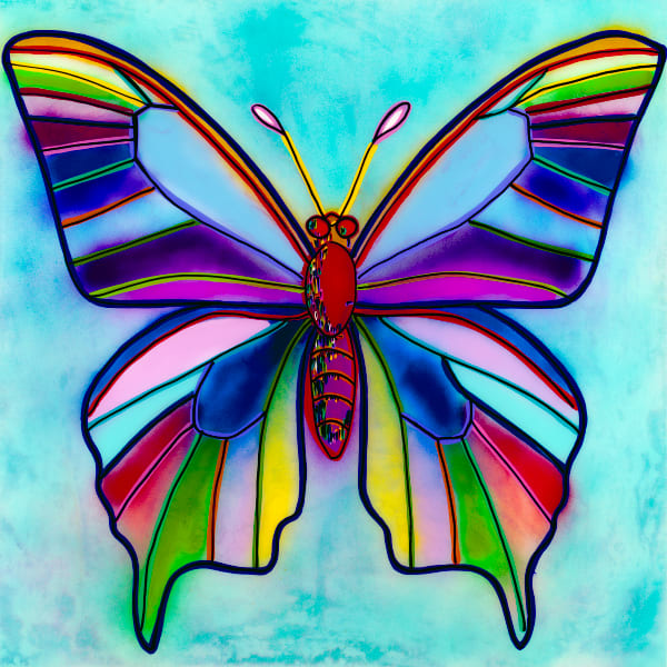 Butterflyin | Animal Art | JD Shultz Art