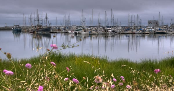 Harbor Boats Photography Art | Drew Campbell Photography