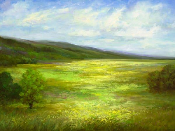 The Bloom - Coastal Wild Flowers by Sheila Finch
