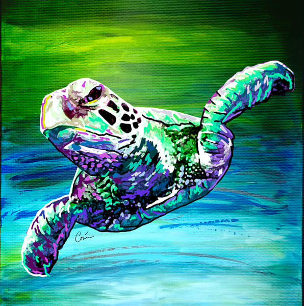 Sea Turtle 10 - Green Sea Turtle