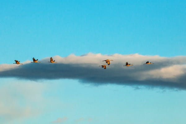 Along The Cloud Photography Art | Craig Primas Photography