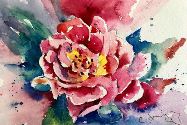 Wild Rose Art | Patrick Dominguez Art