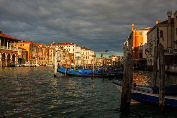 Gran Canale Mattina Photography Art | Craig Primas Photography