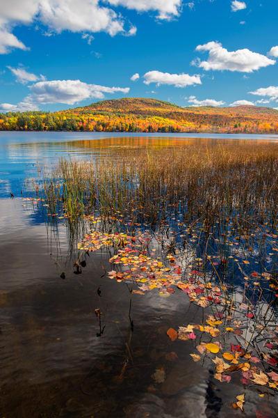 Cobbosseecontee Lake Fall Photography Art | Craig Primas Photography