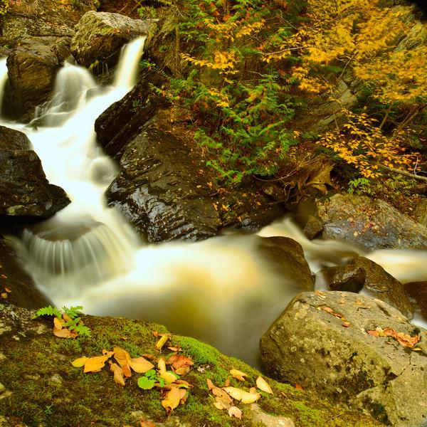 Ellis River Impression Photography Art | Craig Primas Photography