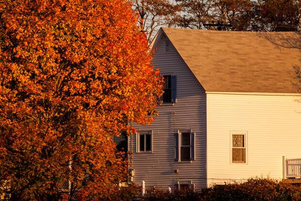 Tree And House Photography Art | Craig Primas Photography
