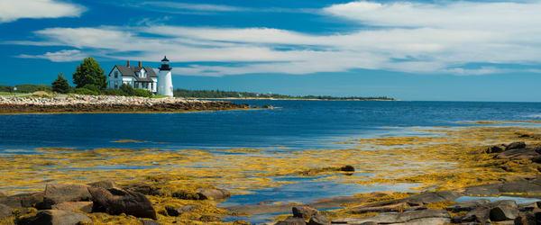 Prospect Harbor Light Photography Art   Craig Primas Photography