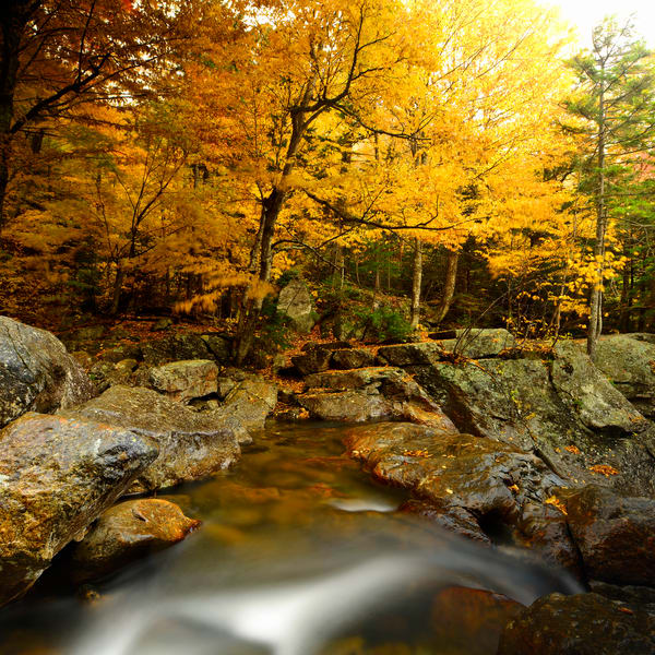 White Mountains Silk Photography Art | Craig Primas Photography