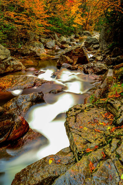 Ellis River Photography Art | Craig Primas Photography
