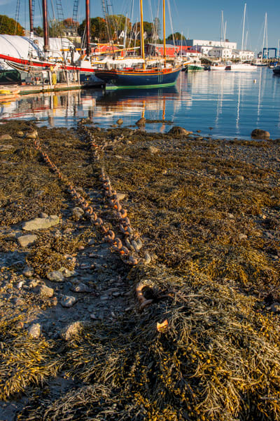 Camden Harbor Chain Photography Art | Craig Primas Photography
