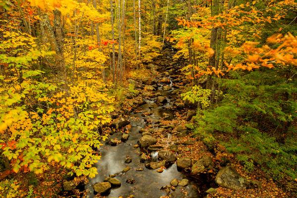 Jackson Creek Photography Art   Craig Primas Photography