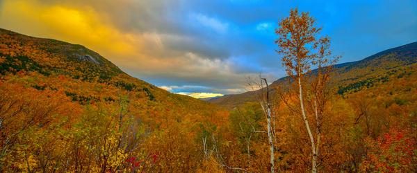White Mountains Autumn Pan Photography Art | Craig Primas Photography