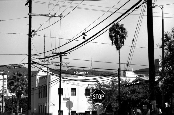 Hollywood Power Lines Photography Art | Peter Welch