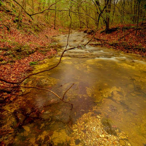 Duke Stream