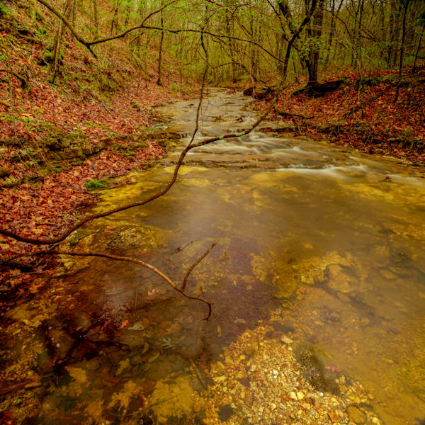 Duke Stream Photography Art | Craig Primas Photography