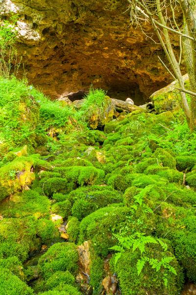 Saltpeter Cave Photography Art | Craig Primas Photography
