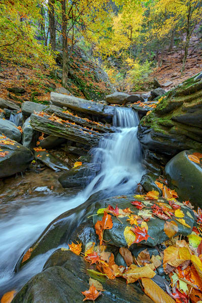 Autumn in the Catskills | Shop Photography by Rick Berk