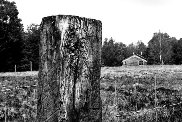 Fence Post Photography Art | Peter Welch
