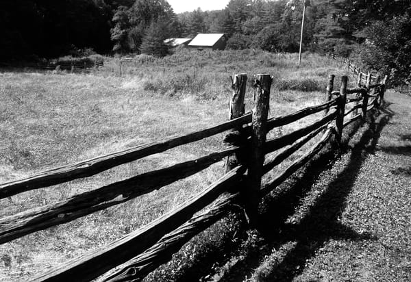Empty Pasture Photography Art | Peter Welch