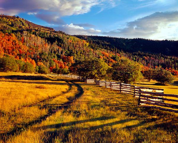 Cedar Highlands Fence Photography Art | Craig Primas Photography