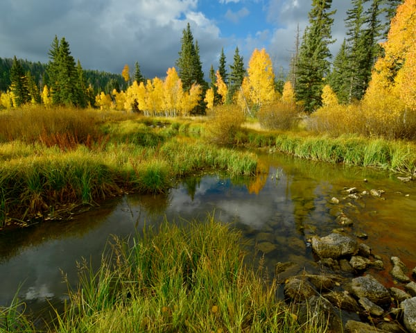 Warm Fall Photography Art | Craig Primas Photography