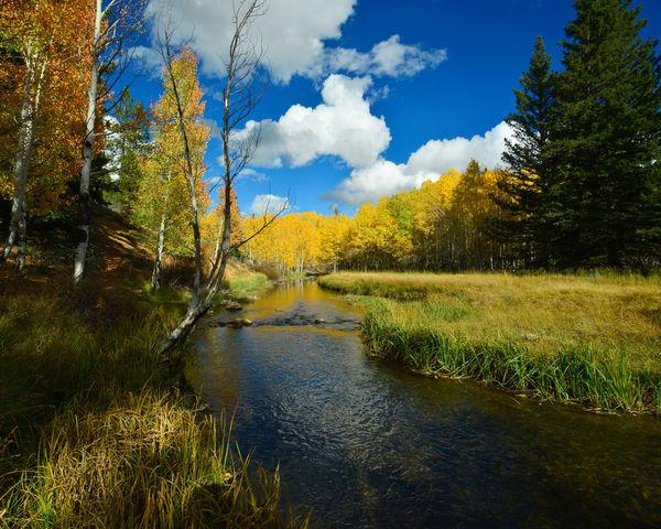 Upper Aspen Mirror Photography Art | Craig Primas Photography