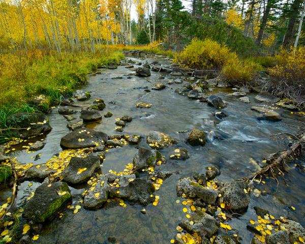 Rocky Stream Photography Art | Craig Primas Photography