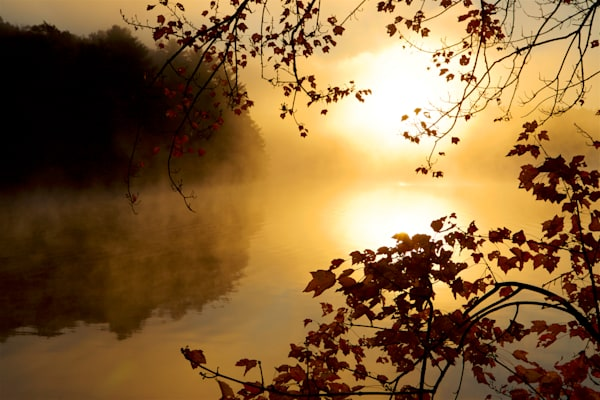 Photograph of a misty sunrise at Thoreau Cove available as art for your home.