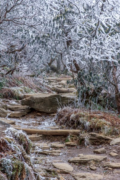 Winter Trail Art | Red Rock Photography