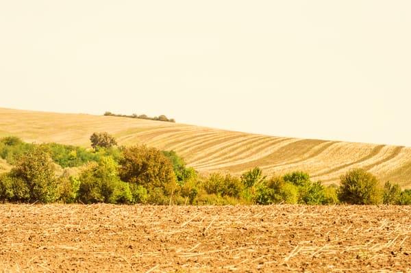 Silent Landscape #4 - Landscape Photography - Fine Art Print by Silvia Nikolov
