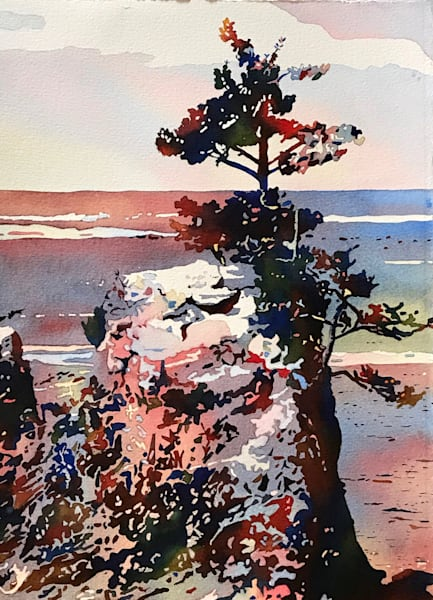 Hardy Tree Growing on Ocean's Rock Outcropping.  Shop Art/ Patrice Cameron Art.
