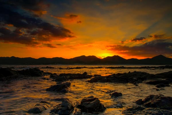 The Bay Photography Art | Craig Primas Photography