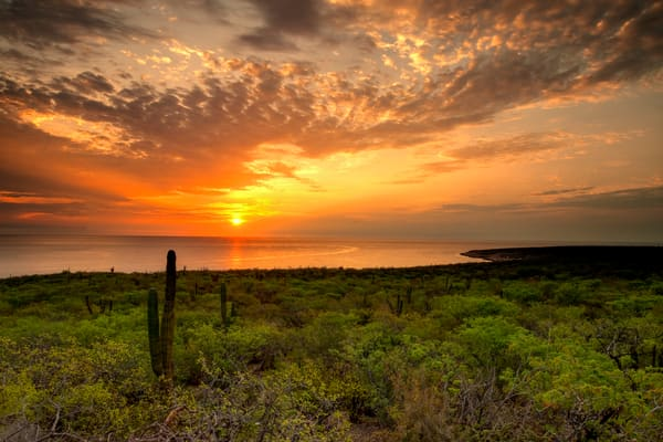 Punta Perico Sunrise Photography Art | Craig Primas Photography