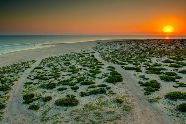 Punta Arena Dune Photography Art | Craig Primas Photography