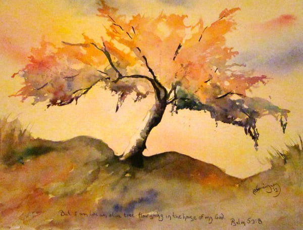 patrick dominguez art-watercolor olive tree
