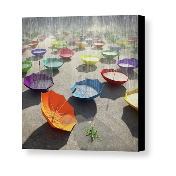 Cynthia Decker | Downpour Mini Canvas