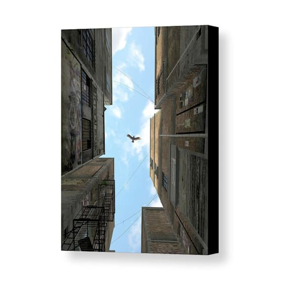 Cynthia Decker | Afternoon Alley Mini Canvas