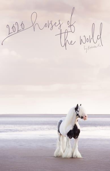 2020 Horse Calendar | Horses of the World