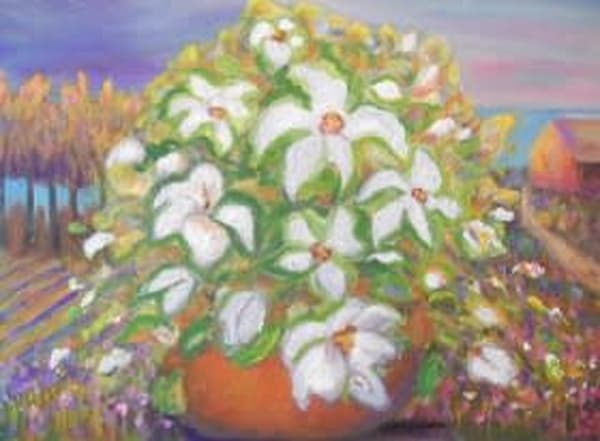"""""""Cottage Row White Floral """" Art by cindyharr.com"""