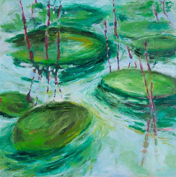 Waterscapes / Paysages aquatiques