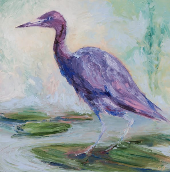 Why Blue Herons are Purple - Prints
