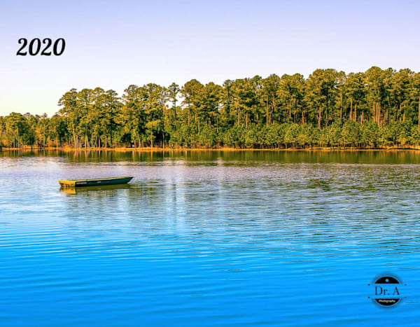 Landscape 2020