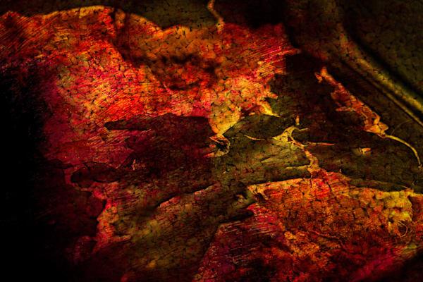 Acrimony Photography Art | Caplan Studios Vault, LLC