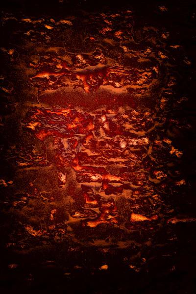Collusion Photography Art | Caplan Studios Vault, LLC