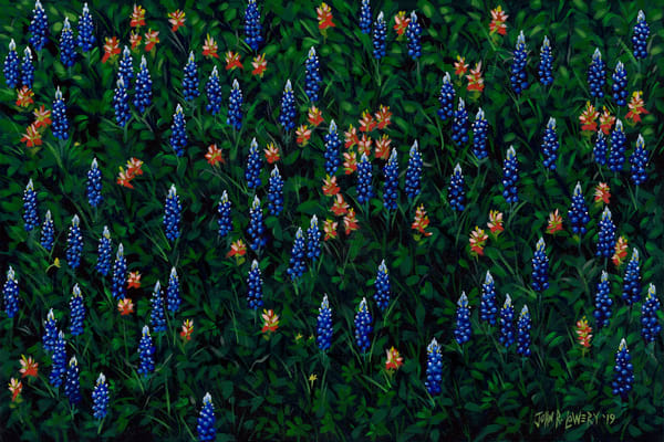 Texas Wildflower Paintings