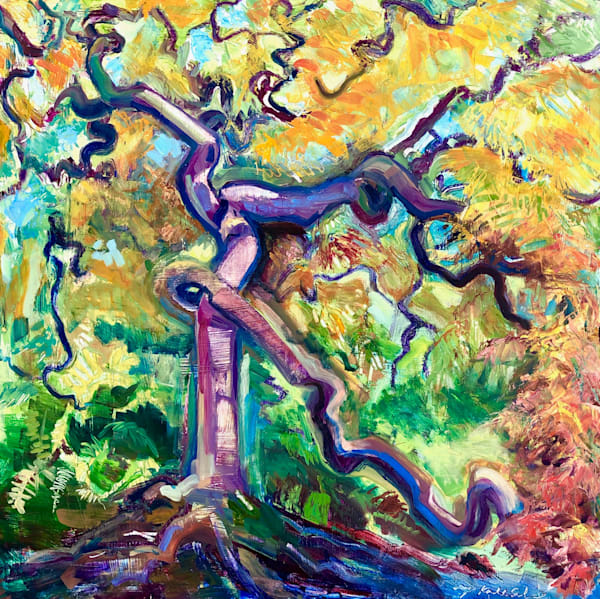 """""""Where Your Glory Dwells 57"""".plein air oil painting of the amazing statuesque Japanese cut leaf Maple tree with twisting trunk and boughs. Painted en plein air at Winterthur estate in Delaware. Incredible color, lush surface. Oil painting is 30""""x30"""""""