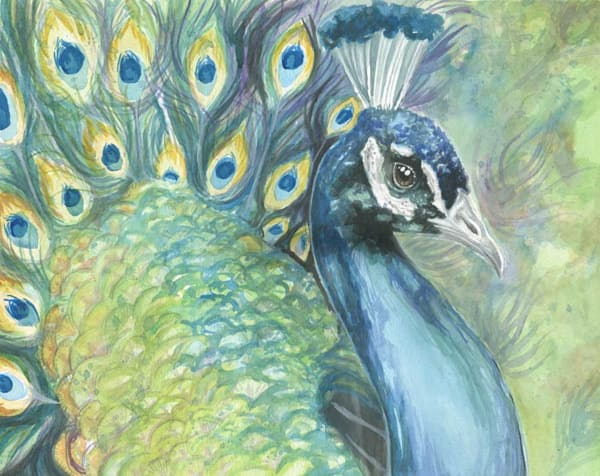 Peacock In Green Art | Kelsey Showalter Studios