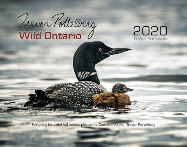 2020 Wild Ontario Calendar