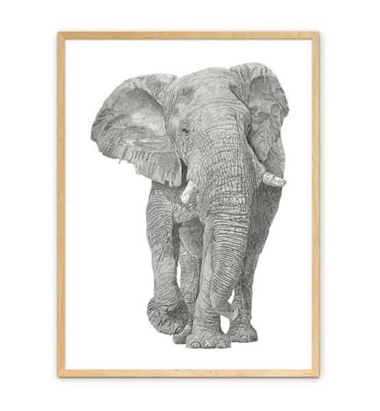 "Fine Art Paper w/ Maple Frame 16""x24"""